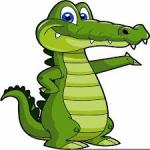 Fotografia crocodilul dvd'