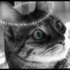 Fotografia angelicat'