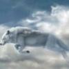 NOU! zona CENTRALA! Bruneta FRUMOASA si eleganta 0765005980 - last post by skywolf